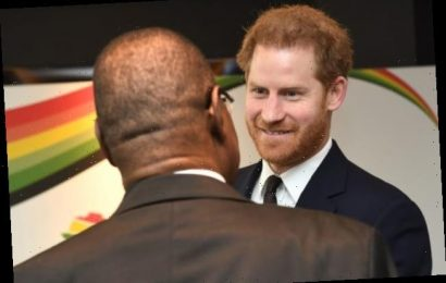 Prince Harry to Partner with Goldman Sachs and Rake in Millions: Report