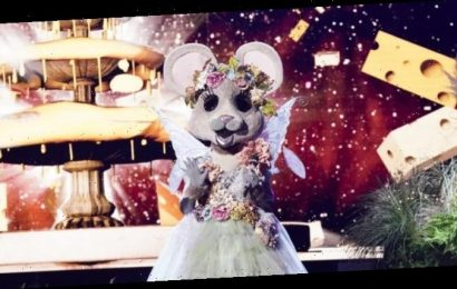 'The Masked Singer' Reveals the Identity of the Mouse: Here's The Star Under the Mask