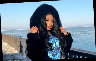 People Convinced Megan Thee Stallion's Lying About Going to College Because of This