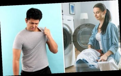 Washing machine: How long can you leave wet or damp clothes in the washing machine?