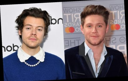 Niall Horan's Story About Meeting Up With Harry Styles Will Make You Smile