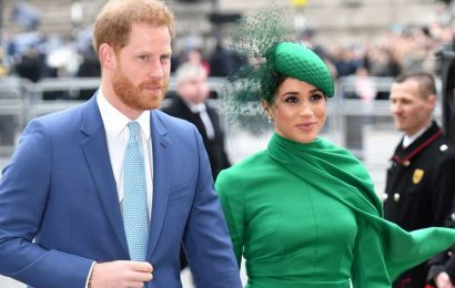Meghan Markle and Prince Harry Stop Using Their Royal Social Media
