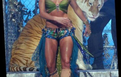 Tiger King's Doc Antle Shared the Stage with Britney Spears at the 2001 VMAs