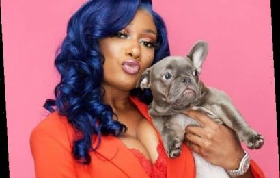 See Pics of Stars and Their Dogs in Honor of National Puppy Day