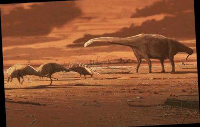 'Dinosaur stomping ground' discovered on Scotland's Isle of Skye