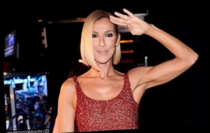 Celine Dion's Throwback Photo Unveiled on Her 52nd Birthday