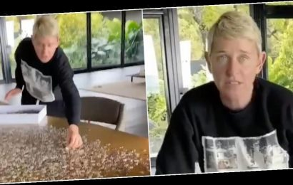 Ellen DeGeneres kept fans updated on her progress with a 4,000-piece jigsaw while isolating — but it didn't go to plan