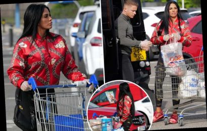 Katie Price hits Tesco in protective gloves as she goes shopping with Dreamboys star Al Warrell in Surrey – The Sun