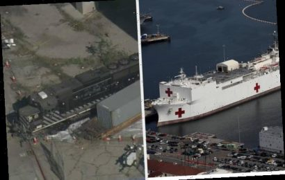 A Man Admitted To Trying To Crash A Train Into The USNS Mercy Over Coronavirus Suspicions