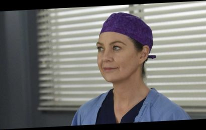 Every Single Theory We Have About 'Grey's Anatomy' Season 17