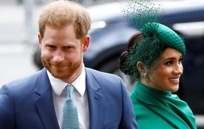 Prince Harry and Meghan Markle plan to set up new charity called Archewell