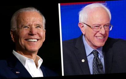 Bernie Sanders Endorses Joe Biden for President: 'We Need You in the White House'