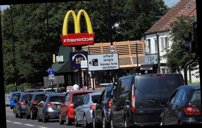 McDonald's food app helps speed up drive-thrus as some fans wait up to TWO hours in mile-long queues