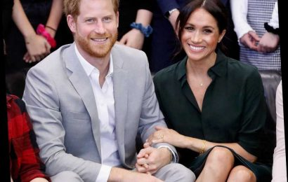 Meghan Markle, Prince Harry Surprised A Bunch Of People During A Zoom Meeting
