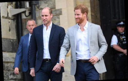 Here's Why Prince William and Prince Harry Could Both Become Insanely Rich in the Future