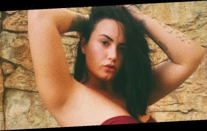Demi Lovato Just Posted New Swimsuit Photos To Instagram And She Looks Amazing
