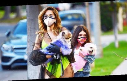 Farrah Abraham Wears Lime Green Swimsuit Out Walking Her Dog With Daughter — See Pic
