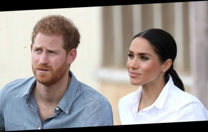 "Meghan Markle and Prince Harry Report Drone Flybys to LAPD: ""The Terror Threat Is Very Real for Them"""