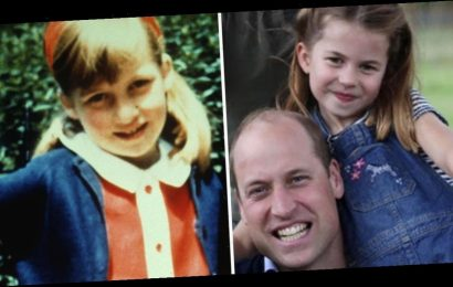 Princess Charlotte has striking resemblance to a young Diana in latest adorable family photo