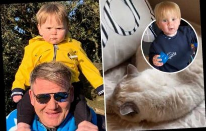 Gordon Ramsay panics pet cat has died as he chases baby son Oscar around the living room – The Sun