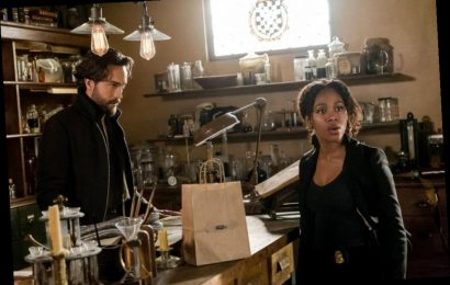 Nicole Beharie Says She Was 'Blacklisted' by Some People After 'Sleepy Hollow' Exit
