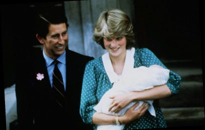Did Princess Diana Always Want a Daughter?