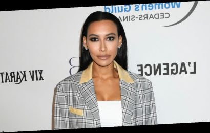 Naya Rivera 'could have hit her head' while diving into lake as search for Glee star continues