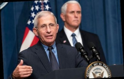 Dr Fauci Feels 'Beaten Up' by White House Attacks, CNN's Gupta Says (Video)