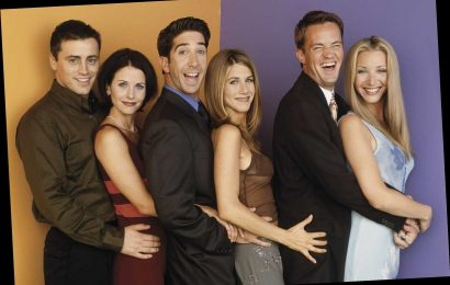 Friends' David Schwimmer claims Ross 'should've dated women of all races' and brands lack of representation 'wrong'