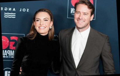 Armie Hammer and Elizabeth Chambers Hammer Have Split