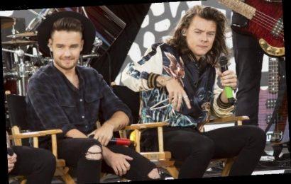 Liam Payne Trolls Fans With Fake Harry Styles Call on TikTok