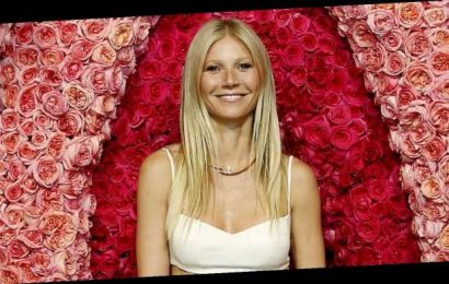 Gwyneth Paltrow Bought Her 14-Year-Old Son a Boobs Puzzle 'for Fun'