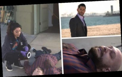 Lucifer season 5 cast: Who plays Matt Owens? Fans recognise showrunner