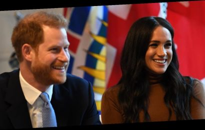 Prince Harry and Meghan Markle Have a New Project in the Works, but What Could It Be?