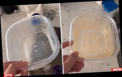 Woman shares her simple hack to remove stains from plastic containers