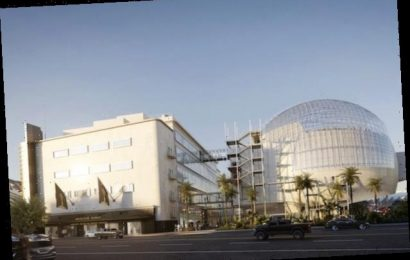 Academy Museum Creative Director Peter Castro Subject of LAPD Sexual Assault Investigation