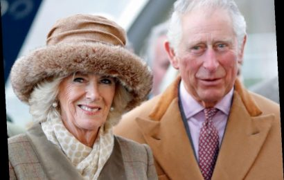 Princess Diana and Prince Charles Had Affairs With Other People to Save Their Marriage, Royal Expert Claims