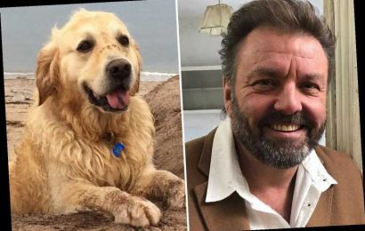 Homes Under The Hammer star Martin Roberts heartbroken as beloved dog Mylo dies at 14 years old