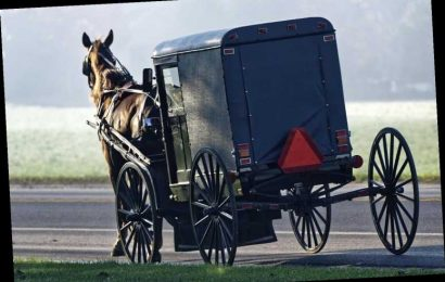 Young Boy and Baby Among 7 People Injured After Car Crashes Into Family's Horse and Buggy