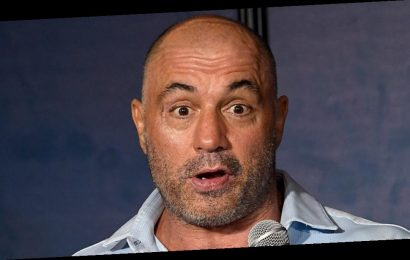 Joe Rogan's net worth: The podcast star is worth a fortune