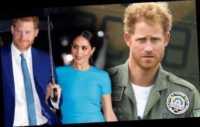 Prince Harry birthday pictures 'should remind us what we have missed' after royal split