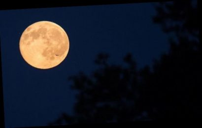 Harvest Moon spiritual meaning: How will this week's Aries Full Moon affect you?