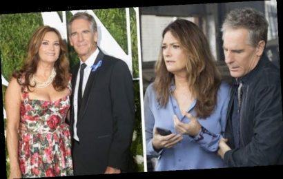 Scott Bakula wife: How will Chelsea Field's role change in NCIS New Orleans season 7?