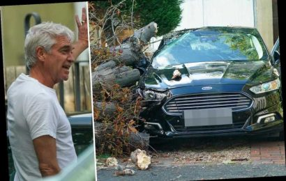 Phillip Schofield inspects the damage after a tree falls outside £2m bachelor pad and smashes his neighbour's car