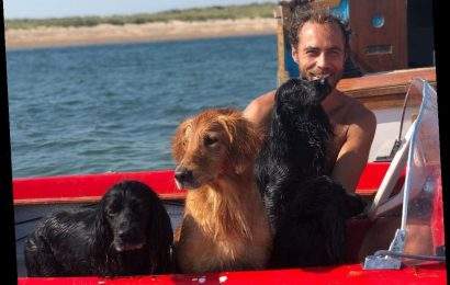 James Middleton Shares Personal Photos of His Pet-Friendly Beach Trips: 'The Dogs Become Mer-Dogs'
