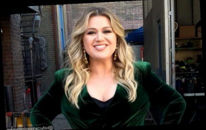 Kelly Clarkson Opens Up About Struggling After Her Divorce: My Life Is a Dumpster
