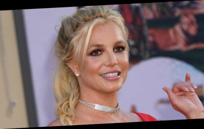 Britney Spears Shares What She Learned Amid Conservatorship Battle
