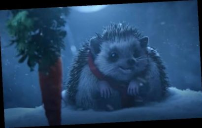 Aldi Christmas advert 2020: Watch the full Aldi Christmas advert HERE