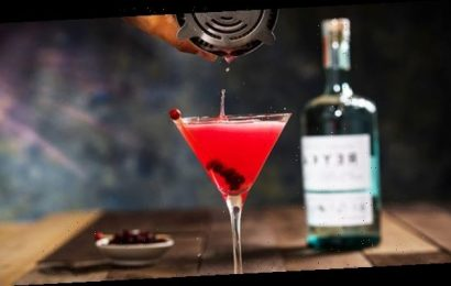20+ Thanksgiving Cocktails To Sip During Zoom Celebrations & Small Gatherings