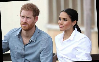 """Princess Diana's Former Aide Rudely Implies the Sussexes Want the """"Shallow Flattery"""" of Celebs"""